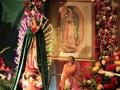 Feast VIRGIN OF GUADALUPE 2014